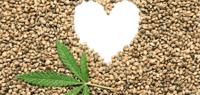 woke picture of a heart design in hemp seeds with a small hemp leaf